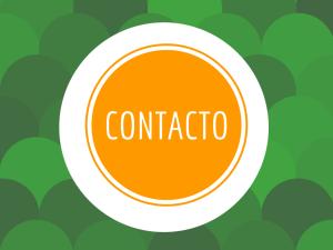 Analítica Digital - Guiometrics contacto