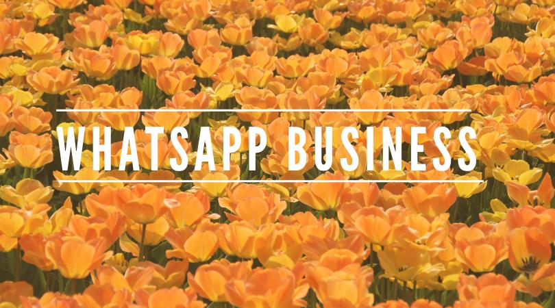 Qué es Whatsapp Business, razones para utilizarlo y usos